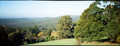 Dandenong Ranges National Park (Matthew Paul Argall) Tags: anscopixpanorama fixedfocus focusfree 35mmfilm plasticlens haking halina panorama panoramic mountainview kalorama kodakultramax400 kodak400 ultramax 400speedfilm 400isofilm forest landscape