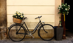 Something to do in Retirement. (Book'em) Tags: prague czechrepublic streets sony bicycle flowers rx100m3