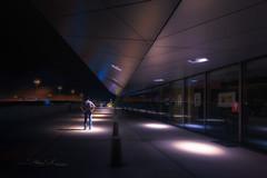 Musée des Confluences (Stéphane Sélo Photographies) Tags: architecture architectureetbatiments france lyon muséedesconfluences pentax pentaxk3ii rhône sigma1020f456 blending creative escalier musée perspective photographie