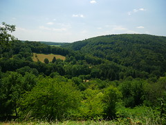 (Knipser85) Tags: panasonic lumix gx80 nature travel neckar