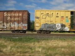 IMG_0835 (El Vid) Tags: graffitti boxcars train