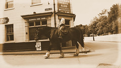 Headless Horsewoman (Matt West) Tags: vintage old fake horse antique headless blistshill