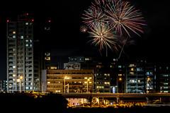 ふしの夏祭り花火大会2018 #1ーSummer Festival fireworks of Fusino2018 #1 (kurumaebi) Tags: yamaguchi 山口市 ogoori 小郡 nikon d750 landscape fireworks 花火 night 夜