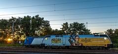 06_2018_08_05_Wanne-Eickel_Üwf__6185_529_ATLU_ES_64_U2_-_023_6182_523_DISPO_TXL (ruhrpott.sprinter) Tags: ruhrpott sprinter deutschland germany allmangne nrw ruhrgebiet gelsenkirchen lokomotive locomotives eisenbahn railroad rail zug train reisezug passenger güter cargo freight fret herne wanne eickel wanneeickel üwf atlu vectron siemens 6182 6185 6193 es 64 u2 es64u2 mrcedispo mrcedispolok mrce dispo stellwerk stellwerküwf txl txlogistik kaiser franz outdoor logo natur werbung