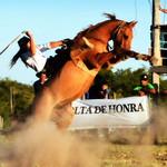 Francisco Solé thumbnail