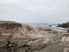 20180618_184935961_iOS (jimward85) Tags: pointlobos carmelbythesea montereybay california