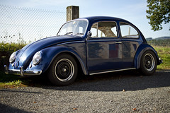 Blue (Steph Blin) Tags: beetle bug vw volkswagen car voiture véhicule vehicle automobile callook blue bleu campagne countryside vdub cox coccinelle fusca coche type1 vévé