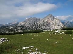 Planjava, Ojstrica (Damijan P.) Tags: hribi gore mountains hiking slovenija slovenia ksa kamniškosavinsjkealpe kamniksavinjaalps velikivrh velikazelenica križevnik prosenak