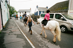 Horse Parade (Bsivad) Tags: wales swansea laugharne dylanthomas
