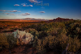 Arches-NP-1