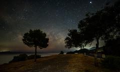 Milky Way in Greece (free3yourmind) Tags: milky way greece peloponnese turn road trees sea