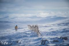 Stay cool (Glencoe Mountain, Scotland, february 2018) (Renate van den Boom) Tags: 02febuari 2018 bergen europa glencoe grootbrittannië jaar landschap maand mist natuur renatevandenboom schotland seizoenen sneeuw weer winter