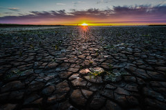 Dutch Death Valley II (mcalma68) Tags: moddergat netherlands climate change drought seascape