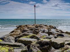 Bognor Beach-E8080492 (tony.rummery) Tags: beach birds bognor channel coast em10 englishchannel mft microfourthirds omd olympus pole rocks seaviews seascape shingle southcoast sussex bognorregis england unitedkingdom gb