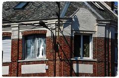 Un Coin Moche (Jean-Luc Léopoldi) Tags: moche bricks coin angle fenêtres nord pasdecalais soleil ombres abandonné fermé
