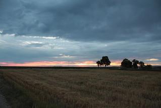 Nevena Uzurov - Evening light