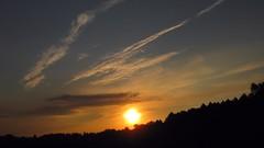 Sunrise 08/21/2018 Lebedin. Ukraine. (ALEKSANDR RYBAK) Tags: восход рассвет утро солнечный свет лучи небо облака деревья природа лето погода сезон пейзаж sunrise dawn morning solar shine beams sky clouds trees nature summer weather season landscape sunset tree dusk skyline forest