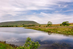 _DSC.0038 - 'Old Pendle' (SWJuk) Tags: england unitedkingdom swjuk uk gb britain barley lancashire pendle pendlehill hill hillside reservoir upperblackmossreservoir water waterscape flat calm reflections bluesky clouds trees 2018 jun2018 spring nikon d7100 nikond7100 tokina1116mm wideangle rawnef lightroomclassiccc landscape countryside scenery