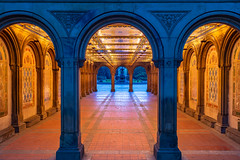 Bethesda Arcade (Amar Raavi) Tags: bethesdaterrace terrace ceiling frame bluehour dawn tiles mintontile centralpark iconic perspective nyc newyorkcity newyork usa architecture city carvings art park outdoors morning lights red orange bethesdafountain angelofwaters