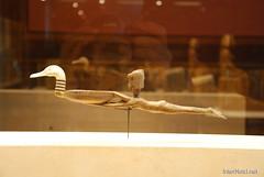 Стародавній Єгипет - Лувр, Париж InterNetri.Net  274
