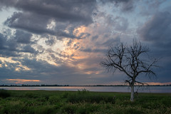 Filled With Opportunities (JeffMoreau) Tags: barr lake sony a7ii zeiss denver colorado airport landscape lone tree sunset google maps