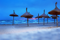 Straw mushrooms. In the blue hour. (Gudzwi) Tags: strand strandbeobachtungen beach beachobservation beachlife onthebeach amstrand sonnenschirme parasols blue bluesky bluehour blues blauestunde blau blauerhimmel sonnenuntergang sunset sundown meer ocean sea seaside landschaft landscape 7dwfsaturdayslandscapes 7dwf stroh straw strohsonnenschirme strawumbrellas mallorca spanien spain himmel wasser water sand strandleben pink