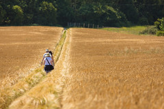 Through the field (Future-Echoes) Tags: 4star 2017 bokeh depthoffield dof field kent people summer walkers