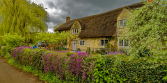 Cottage in Teffont, Wiltshire (cantdoworse) Tags: cottage spring teffont tisbury wiltshire canon 6d thatched country