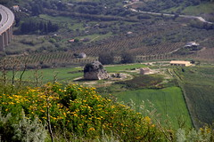 IMG_8016 (Vito Amorelli) Tags: segesta sicily dorictemple greektheater