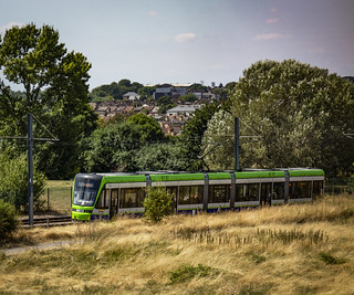 Tram Passes Through South Norwood  Country Park