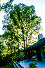 2017.08.05.7306 Big Oak (Brunswick Forge) Tags: 2017 summer virginia grouped outdoor outdoors nature woods house favorited