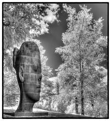 Wilsis (K3v1n5) Tags: nikon d80 infrared 590nm 1855mm 1855mmf3556gvrii yorkshire sculpture park 1855
