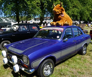 Ford Escort and Highland Cow at Moffat classic Car Rally 2018