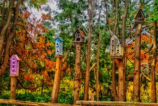 Kleinburg Onatrio- Canada - Home Made Birdhouse- Feeders - HDR