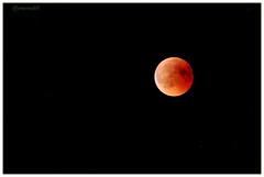 Eclipse (jamesreed68) Tags: lune eclipse iel étoile groupenuagesetciel