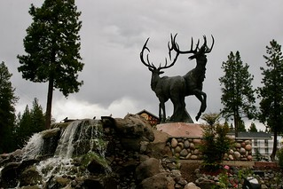 Stag Fountain
