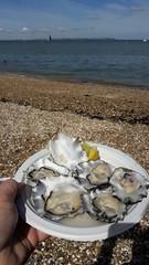 Whitstable Oysters (timothyhart) Tags: saxonshoreway faversham hernebay whitstable swale kent england uk sea boats thames tide waves creek inlet coastline coastalwalk coastalpath longdistancewalk barge oyster trestle