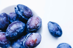 Close up of blue plums and water drops on them (wuestenigel) Tags: washed natural dessert nature sweet plum table background healthy agriculture prune food macro ripe isolated white stone plums wooden closeup drop one vegetarian blue fresh tasty green summer drops delicious nutrition water purple raw autumn cut vitamin juicy fruit rustic organic