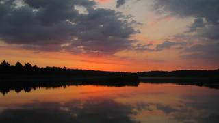Dawn on the Swan Lake 08/14/2018 Lebedin. Ukraine.