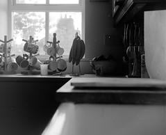 Mug-Shot (russell_w_b) Tags: baldamessbaldix 120rollfilm ilfordfp4 ilfordid11 blackandwhitefilmphotography