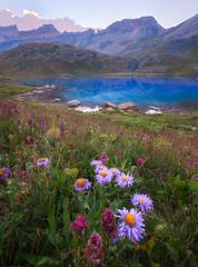 Ice Lake (Hongyu Guo) Tags: icelake landscape silverton alpine wildflowers blossom backpacking hiking blue mountain
