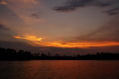 ...ribbon of gold (Jim Atkins Sr) Tags: sunset cloudsstormssunsetssunrises spectacularsunsetsandsunrises cloudscape clouds northcarolina northwestcreek fairfieldharbour sony sonyphotographing sonya58