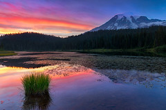Farewell to the Sun (Ania Tuzel Photography) Tags: mtrainier sunset paradise landscape washington canon ef1635mm