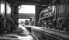The Railway Workshop (photofitzp) Tags: 30850 4141 69523 78019 br gcr gwr lner lordnelsonclass loughborough n2class prarietank railways sr standardclass steam