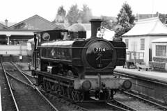 7714 GW 0-6-0 Pannier Tank (1930) (Roger Wasley) Tags: 7714 gw 060 pannier tank svr severnvalleyrailway kidderminster heritage steam trains locomotive railways mono blackandwhite monochrome