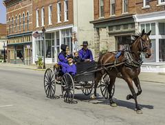 Amish (will139) Tags: horse horseandcarriage amish family us27 genevaindiana sunglasses