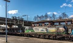087_2018_03_20_Hamburg_Harburg_6187_145_mit_Container_Tragwagen_Hafen_1216_910_LTE_mit_6193_216_ELOC_Lz_Haf (ruhrpott.sprinter) Tags: ruhrpott sprinter deutschland germany allmangne nrw ruhrgebiet gelsenkirchen lokomotive locomotives eisenbahn railroad rail zug train reisezug passenger güter cargo freight fret hamburg harburg akiem boxx ctd db dispo dbcsc dsc egp eloc locon lte me meg mt mteg nrail press rhc rsc slg 0185 0650 0812 1212 1214 1246 1261 1273 3296 3333 4482 5812 6101 6140 6143 6145 6182 6187 6193 6241 7386 logo natur graffiti