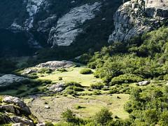 P1011036 (laurent.guillon) Tags: paysage