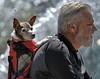 Backpacked Dog (Scott 97006) Tags: man guy ride backpack dog canine animal pet bokeh cute