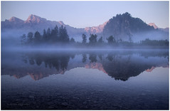 Morning has broken (Petra Ries Images) Tags: samyang12mmf22 morning morgen morgenstimmung morgenlicht mirror spiegelung mountains berge gebirge see lake water wasser pink blue blau trees fog nebel bluehour blauestunde austria österreich manualfocus manuallens oberösterreich